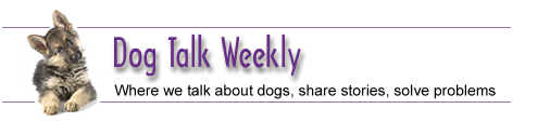 Dog Talk Weekly - Covering dog obedience to dog nutrition